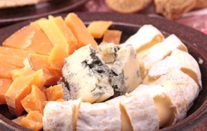 暖流とチーズ