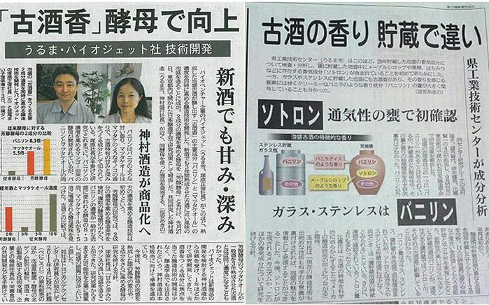 沖縄タイムス掲載記事