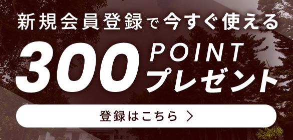 新規会員登録で今すぐ使える300ポイントプレゼント